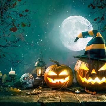 Halloween c  «Ветсинтез»